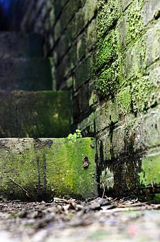 Dover Steps by Quirky Jen Photos
