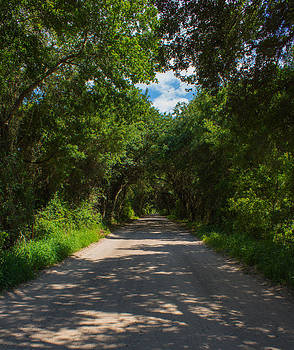 Down an Old Road by Michael Hunter