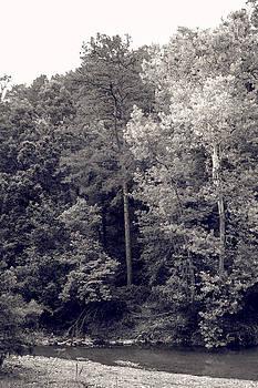 Nina Fosdick - Down by the Creek