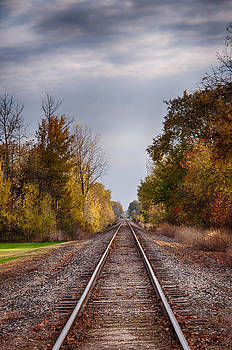 Down the Line by Roxanna Coeling