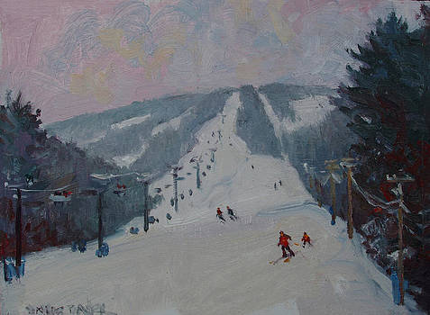 Downhill by Dianne Panarelli Miller
