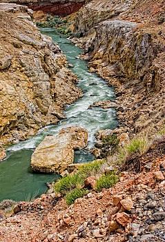 Downstream by Alina Marin-Bliach