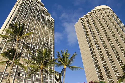 Downtown Palms by Ashlee Meyer