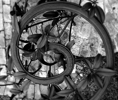 Downward Spiral by Alyson Innes