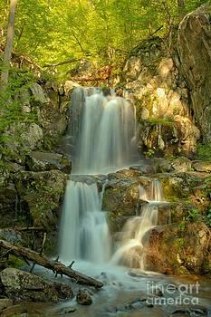 Adam Jewell - Doyles River Falls Sunkiss