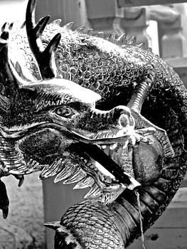 Larry Knipfing - Dragon Art II