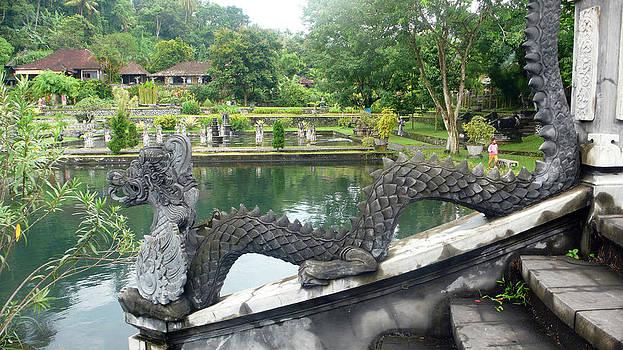 Dragon by pool by Jack Edson Adams