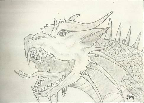 Dragon Sketch by Saleem Baig
