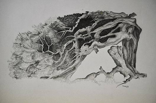 Dragon Tree with people by Glenn Calloway