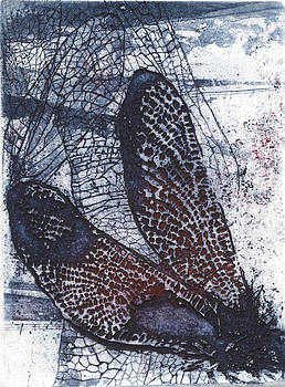 Dragonfly by Agnieszka Borowska