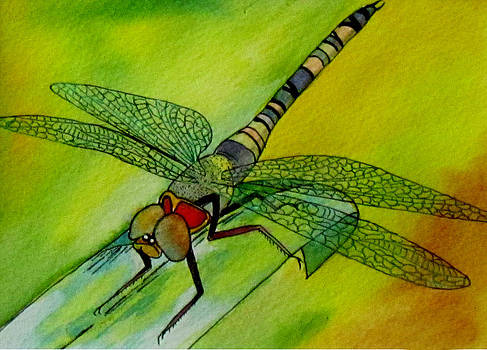 Susan Duxter - Dragonfly Dreaming