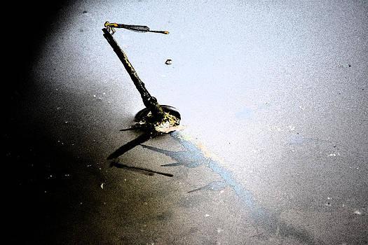 Joe Bledsoe - Dragonfly