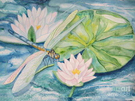 Dragonfly by Sherri Anderson
