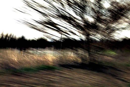 Barbara Giordano - Drama in Landscape
