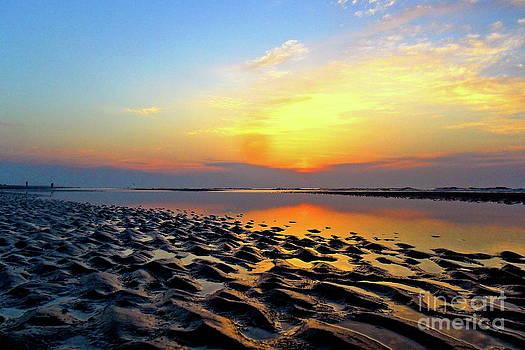 Dramatic Dawn by Kimberly Nickoson