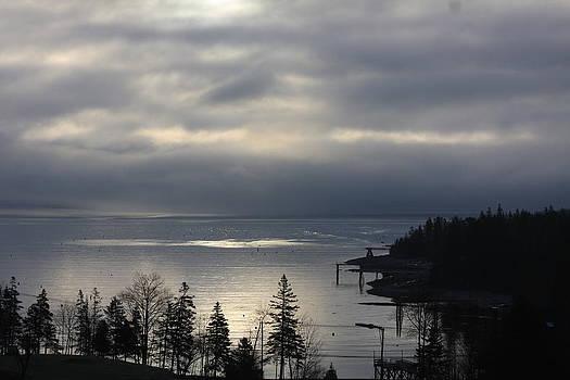Dramatic Grey Foggy Sunrise by Dana Moos