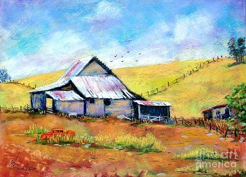 Drapper Valley Barn by Bruce Schrader