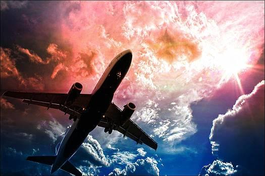 Aaron Berg - Dream Flight