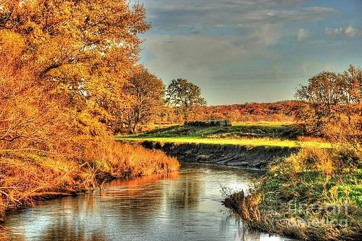 Dream River by Thomas Danilovich