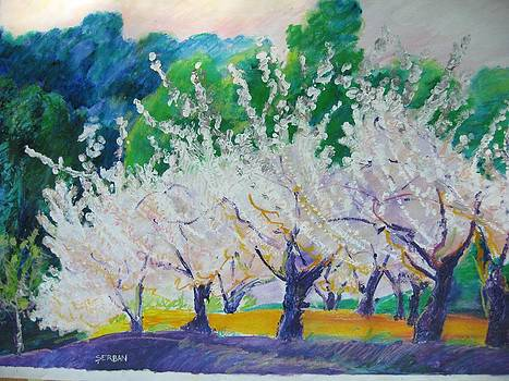 Dreaming Orchard by Blanche Serban