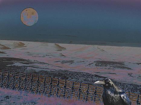 Dreamland by Aurora Levins Morales