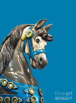 Barbara McMahon - Dreams of a Horse in Blue