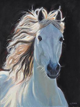 Dreams of Pegasus by Tahirih Goffic