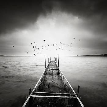 Dreams by Piotr Belcyr