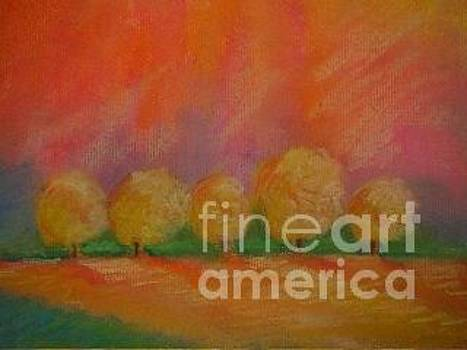 Dreamsicle Forest  by Susan Vannelli