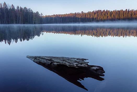 Dreamstate II - Ver 2 by Matti Ollikainen