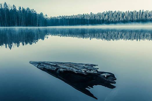 Dreamstate by Matti Ollikainen