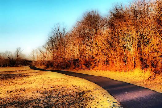 Dreamy Pathway by Thomas  MacPherson Jr