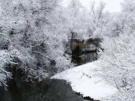 Jaclyn Hughes Fine Art - Dreamy Snow