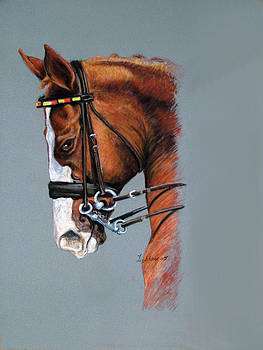 Dressage Horse by Barbara Lightner