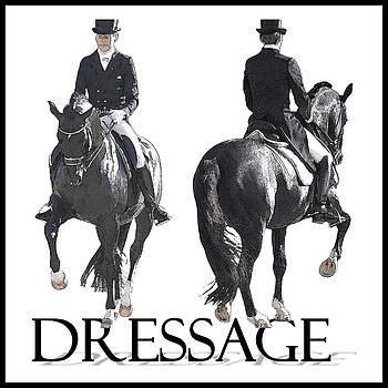 Dressage II by CarolLMiller Photography