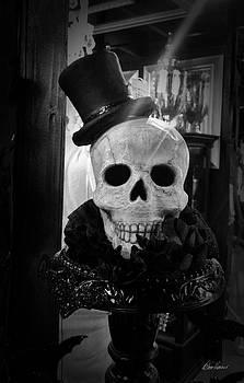 Diana Haronis - Dressed to Kill