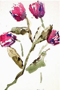 Dried Flowers by Michael  Accorsi