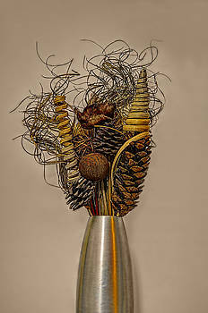 Dried Flowers by Nick Field