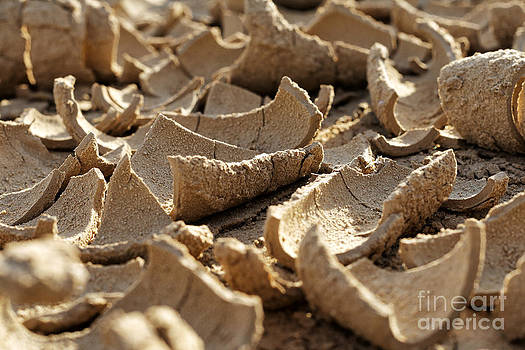 Dried mud in a drought by Alexandr  Malyshev