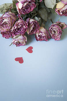 Dried Roses with Paper Hearts by Jan Bickerton