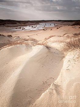 Drifting Dunes by David Hanlon
