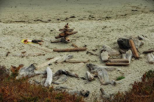 Donna Blackhall - Driftwood
