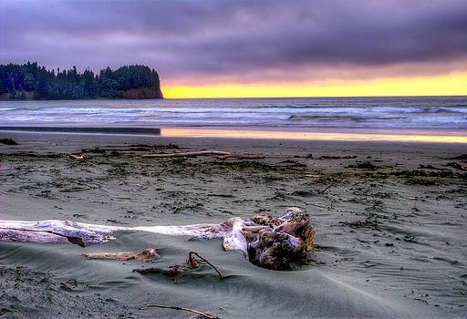 Driftwood Log by Rod Mathis
