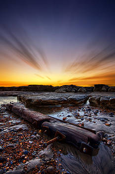 Driftwood by Mark Leader