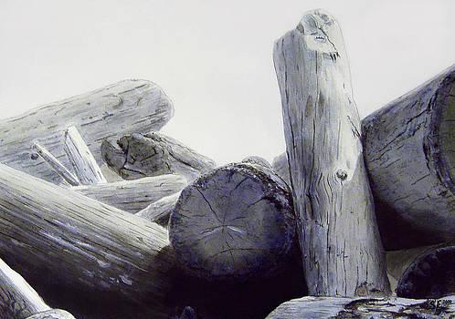 Driftwood by Sigurdur Aegisson