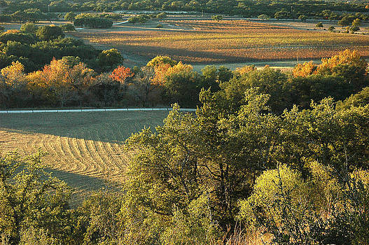 Robert Anschutz - Driftwood Vineyards