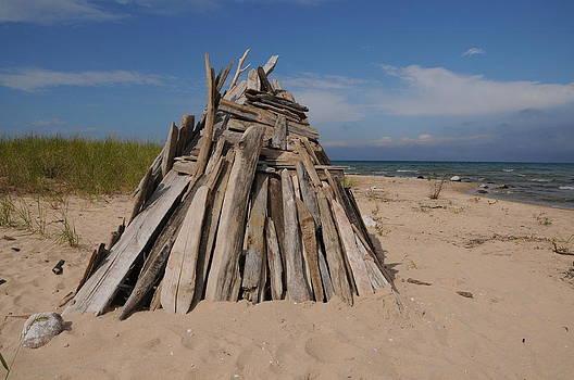 Driftwood Wigwam by G Teysen