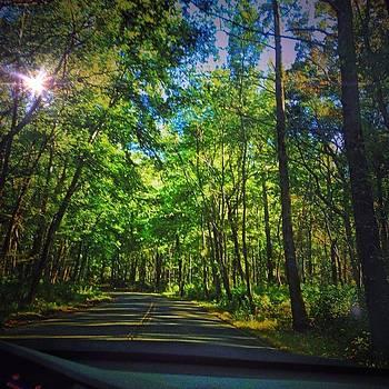 Driving by Joshua Rosen