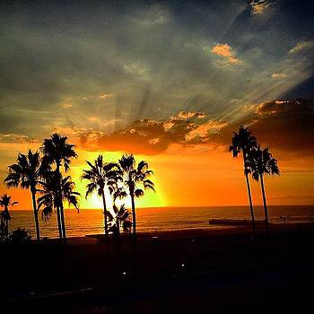 #driving #sunset #playadelrey #malibu by Julia Goldberg