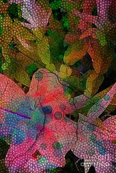 Drops of color by Denisse Del Mar Guevara